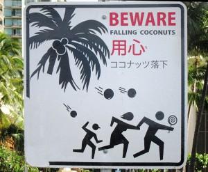 'BEWARE_FALLING_COCONUTS'_sign_in_Honolulu,_Hawaii