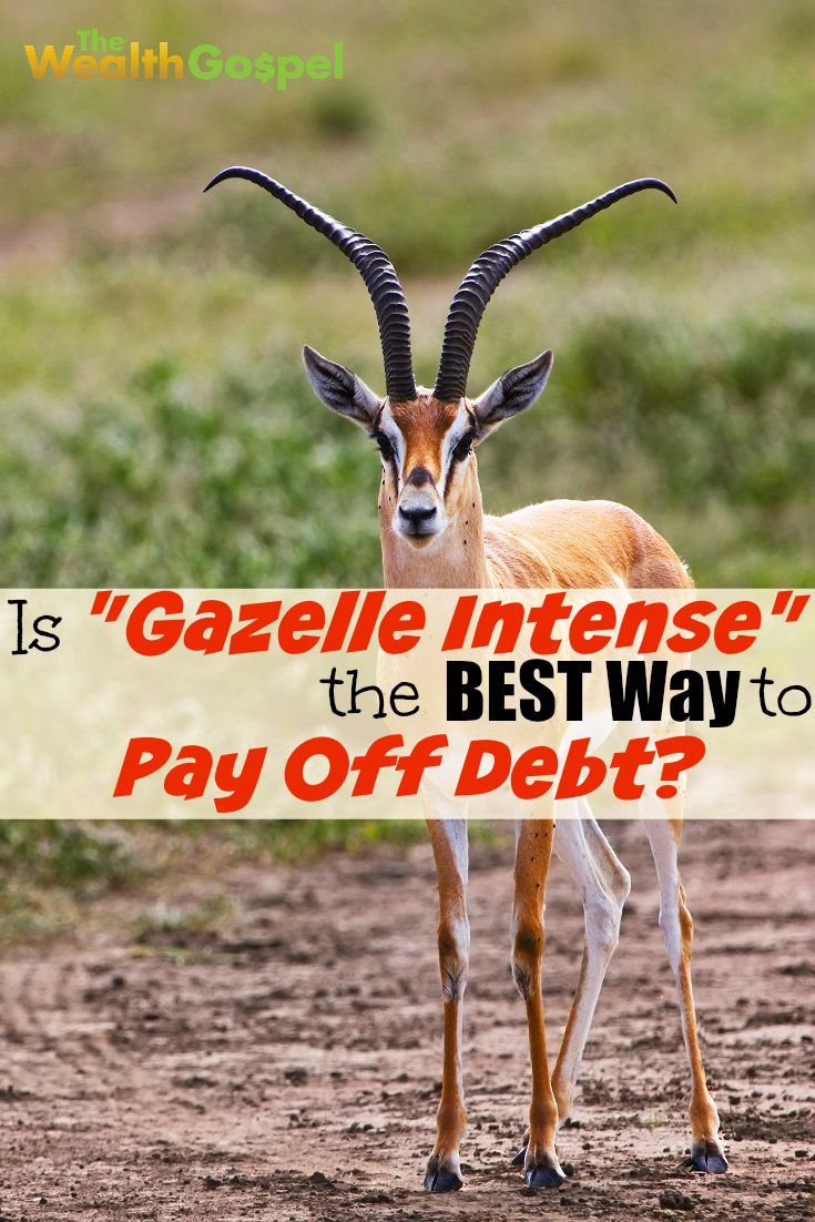 "Being ""gazelle intense"" about your debt definitely works well for some people. But, is it the best way to pay off debt for everybody?"